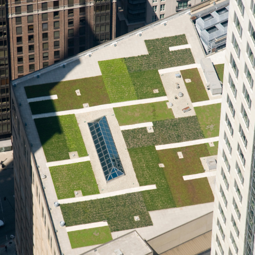 High Rise Green Roof