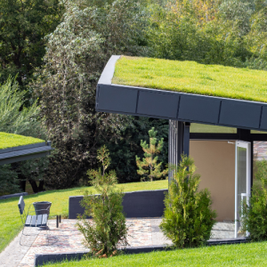 Going Green With Green Roofing